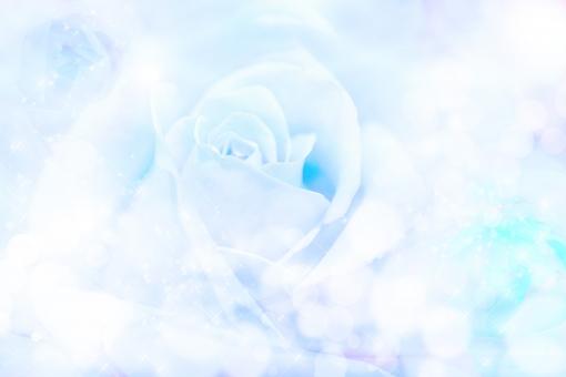 薔薇 バラ 花 植物 花束 柔らかい アップ up クローズアップ 明るい 優しい 淡い うすい ぼけ テクスチャ 夢 紫 バックイメージ 背景 テクスチャー 壁紙 バックグラウンド ロマンティック 幻想的 華やか 白 ブルー 青 水色 キラキラ 玉ボケ 輝き キラメキ きらめき かがやき ファンタジー