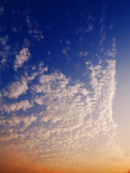 秋 秋空 青空 夕方 赤み 夕焼け 鱗雲 天高く 青