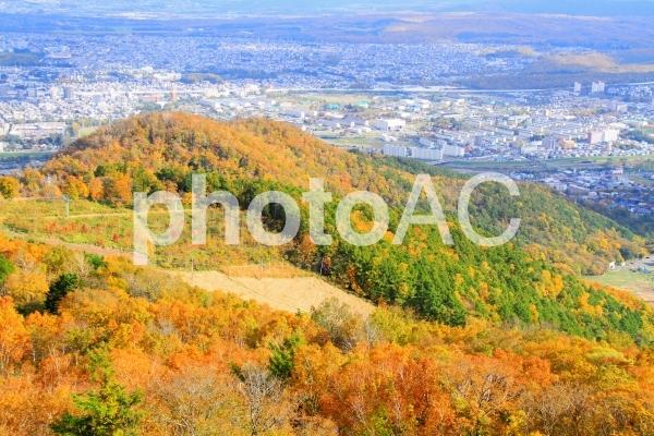 藻岩山の紅葉の写真