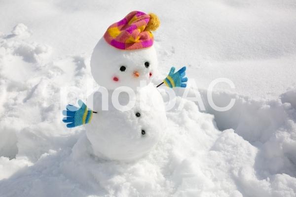 雪だるま_2の写真