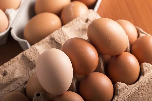 たまご 卵 玉子 タマゴ エッグ 楕円 卵色 ベージュ 料理 並べる 生き物 食べ物 食材 食料 置く 置いてある 物撮り 屋内 人物なし 横から視線 殻 斑点 15個 整然 複数 レシピ  容器 パック パック詰め 白とベージュ 対比 たくさん あふれんばかり アップ ズーム 紙パック 鶏 にわとり ニワトリ