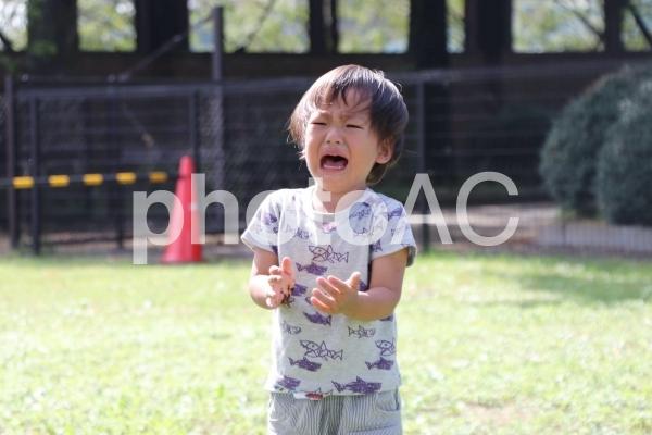 癇癪をおこす幼児の写真
