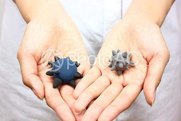 手の上のウイルス模型3の写真