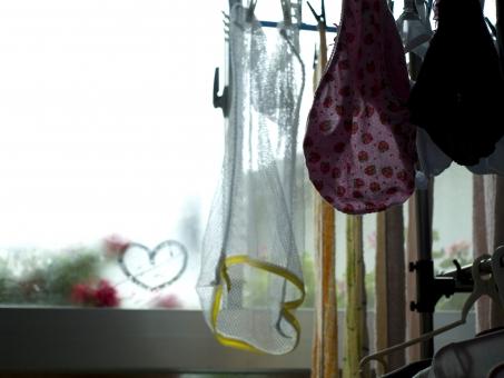 ハート 洗濯物 家事 主婦 パンツ ショーツ 恋 下着 冬 雪 寒い 植物 家庭 生活