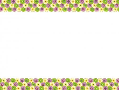花 背景 風景 景色 バック お花の背景 花の背景 光 日差し 満開 反射 フラッシュ flour 花びら 鮮やか 綺麗 きれい 植物 四季 自然 和風 和紙 和 テクスチャー 緑 フレーム プレート ポップ テキストスペース お花 テクスチャ エコ