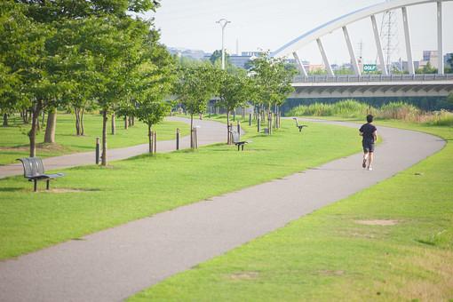 自然 風景 景色 環境 スナップ 旅行 散歩 公園 森林 緑 林 光合成 日光 季節 葉っぱ 植物 美しい きれい シルエット 野草 癒し  広場 遊具 遊ぶ 楽しい 広い 走る ジョギング ランニング マラソン ランニングコース