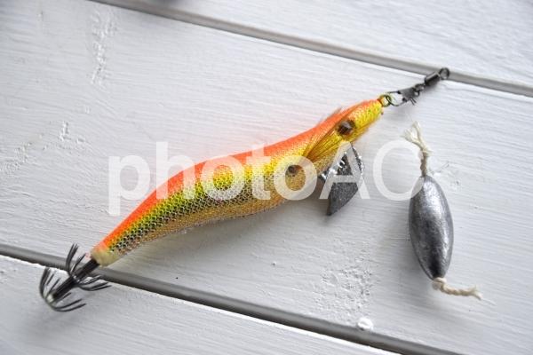 エギでタコ釣りをする仕掛けの写真
