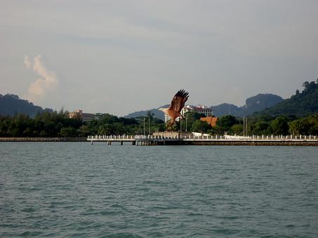 外国 海外 東南アジア マレーシア クアラルンプール 湖 人造湖 プトラジャヤ湖 プトラ湖 湿地帯 動物 生き物 鳥 猛禽 飛翔 飛ぶ 羽ばたく 渡る バードウォッチング 水辺 岸辺 湖畔 湖岸 建築物 建物 桟橋 森 丘陵
