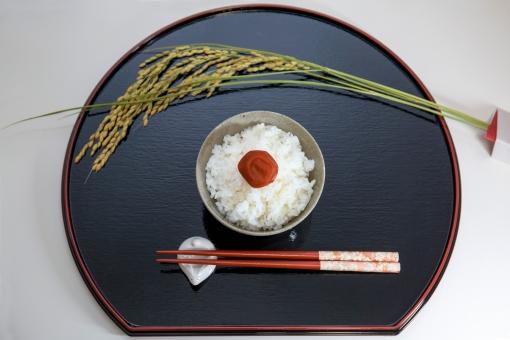 米 ご飯 ごはん 茶碗 お茶碗 白米 お米 コシヒカリ 食べ物 料理 和食 和風 フード 箸 おはし はし 箸置き 食物 日本食 和風料理 日本 和 食事 農業 稲穂 稲 梅干し 梅 お盆 盆 ぼん 新米 イメージ