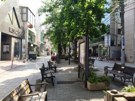 東京 都内 目黒区 自由が丘 緑道 ベンチ 石畳 通り 深緑 休日 朝