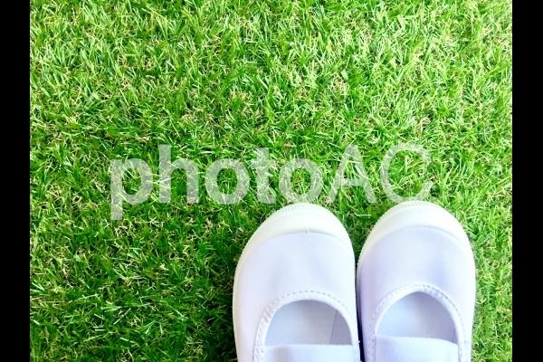 芝生に上履きの写真