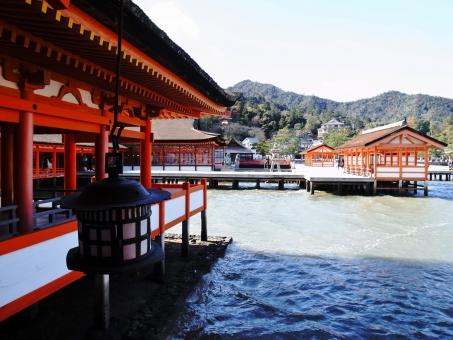 厳島 宮島 広島 厳島神社 神社 社殿 海 山 朱色 参拝 お参り 初詣 正月 日本 灯篭 旅行