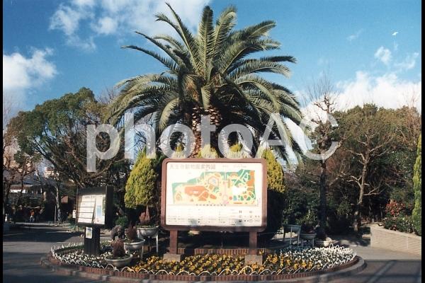 天王寺動物園 [Tennoji Zoo]-002の写真