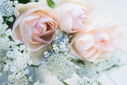 花束 ブーケ バラ ホワイトレース 白 可憐 プレゼント 女性 記念日
