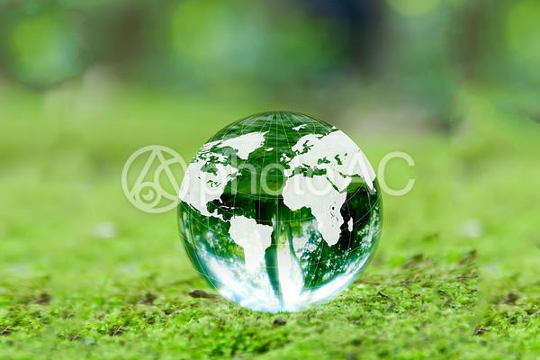 新緑と地球儀2の写真