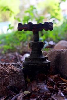 スプリンクラー 風景 景色 金属 鉄 地面 無機質 屋外 外 表面 アップ クローズアップ 水滴 水 庭 植物 草 緑 自然 枯れ葉 赤土 放水 水まき 設備 装置