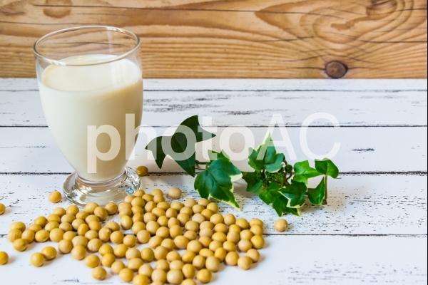 豆乳の写真