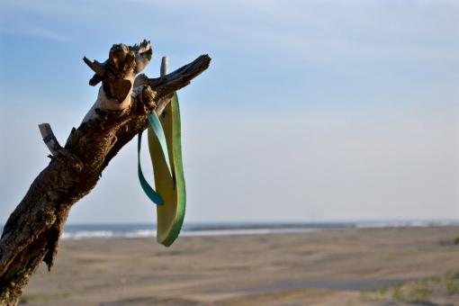 砂浜 青空 空 ビーチサンダル ビーサン 枯れ木 倒木 海 青 自然 風景 九十九里浜 千葉 水平線