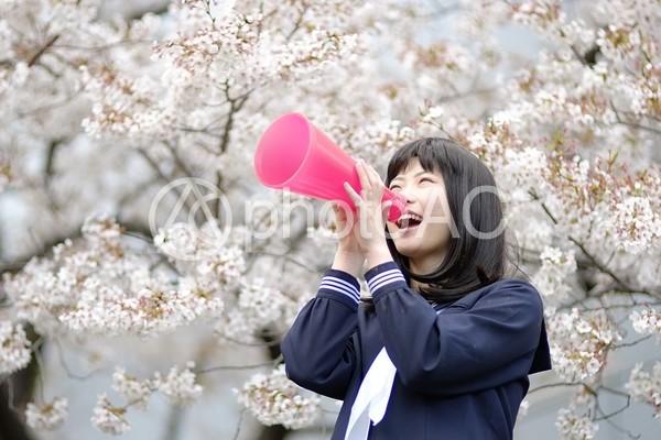 メガホンを持つ女子高生5の写真