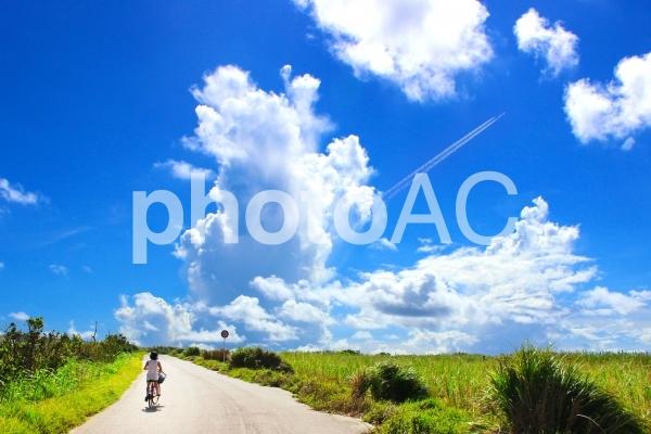 夏の旅の写真