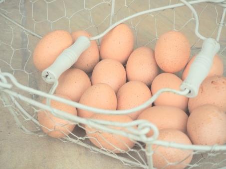 バスケット ワイヤー 白 パステル パステルカラー たまご 卵 料理 調理 食材 たべもの 食べ物 朝食 モーニング エッグ