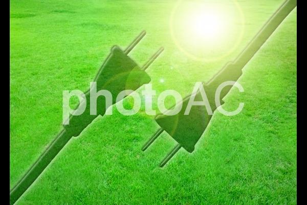草原とコードの写真