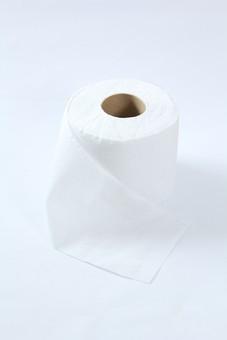 トイレ トイレットペーパー 紙 ペーパー 芯 拭く 巻き物 白背景 影 接写 アップ 長い ロール 便所 後始末 普通巻紙 ロール紙 トイレットロール 便所紙 ホルダー リサイクル 製紙工場 便所用 ちり紙 使い捨て 紙巻器