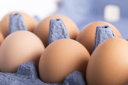 たまご 卵 玉子 タマゴ エッグ 楕円 卵色 ベージュ 料理 並べる 生き物 食べ物 食材 食料 置く 置いてある 物撮り 屋内 人物なし 横から視線 殻 斑点 6個 整然 複数 レシピ アップ ズーム 容器 パック パック詰め 紙パック 鶏 にわとり ニワトリ