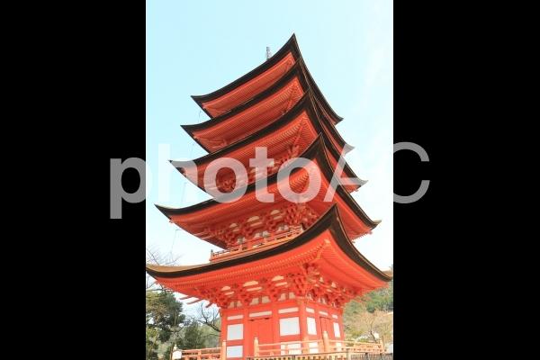 広島県厳島の五重塔の写真
