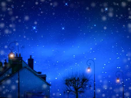 雪降る夜の写真