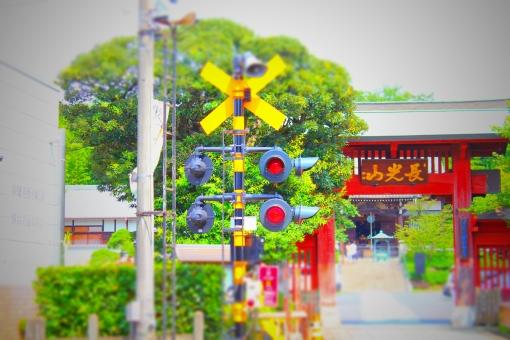 お寺 妙蓮寺 踏切 電車 東横線 風景