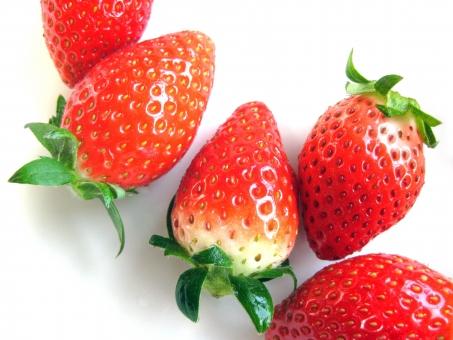 いちご イチゴ 苺 赤 strawberry ストロベリー 美味しい おいしい 瑞々しい みずみずしい red 白バック 甘い あまい