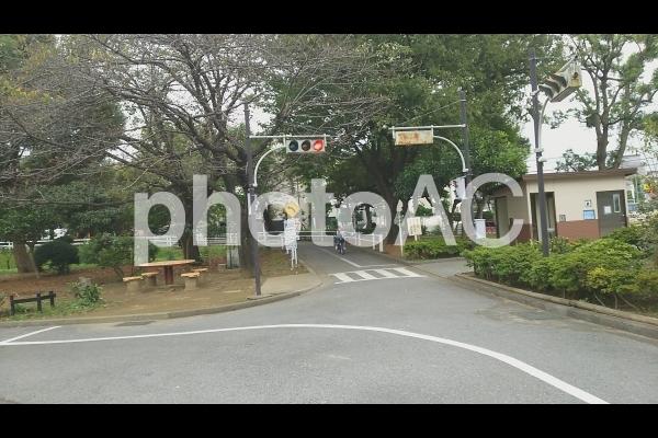 交通公園の写真