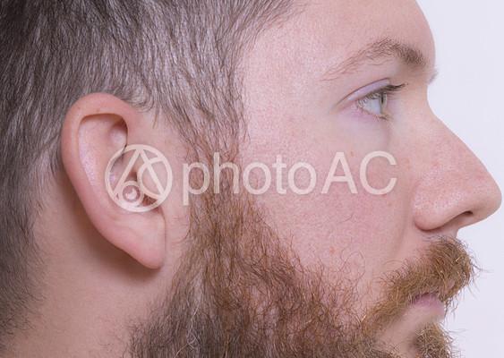 外国人男性の横顔1の写真