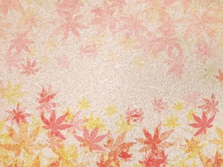 秋背景の写真