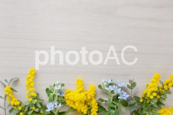ボタニカルフレームの写真