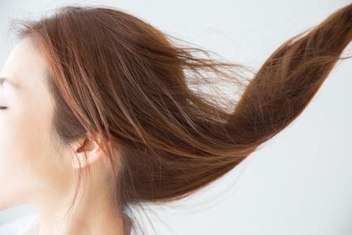 「髪 フリー素材」の画像検索結果
