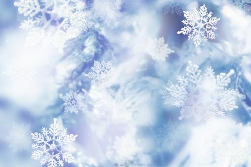 frozen_グレーの写真
