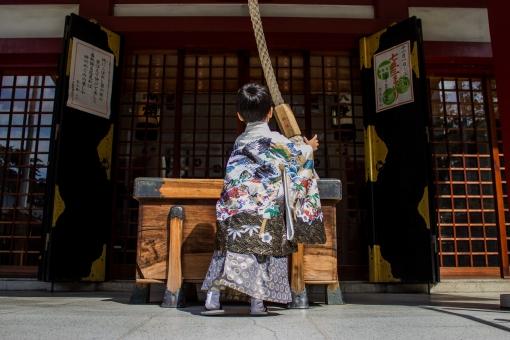 七五三 着物 男の子 お参り 神社 行事 日本 羽織 袴