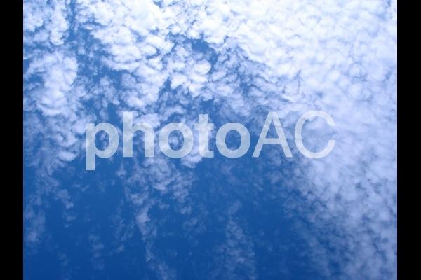 空 Sora4の写真