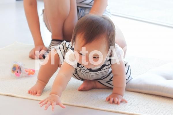 遊び始める赤ちゃんの写真