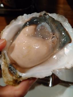 牡蠣 オイスター 焼牡蠣 セレブ 金持ち リタイア リタイヤ リッチ セミリタイア セミリタイヤ 和食 イタリアン フレンチ 海鮮 魚介 おいしい oyster 生牡蠣 岩牡蠣 deshuitre celeb groume rich