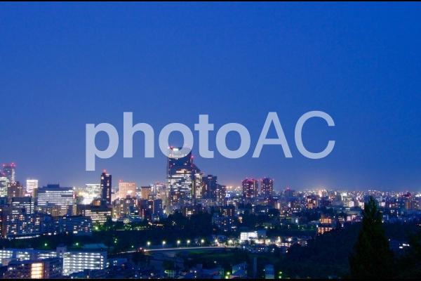 仙台城から望む夜景7の写真