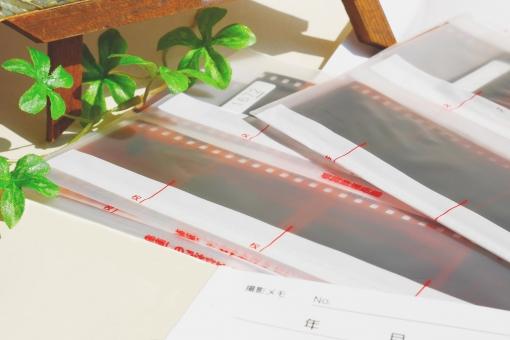 写真 フィルム ネガ 映像 記録 保存 静止画像 撮影 カメラ 現像 プリント データ化 メディア 広告 写真館 フィルムカメラ 焼き増し 思い出 雑貨 カラー 記憶 記念 過去 懐かしい カメラマン 時代 時間 昭和 旅行 取材