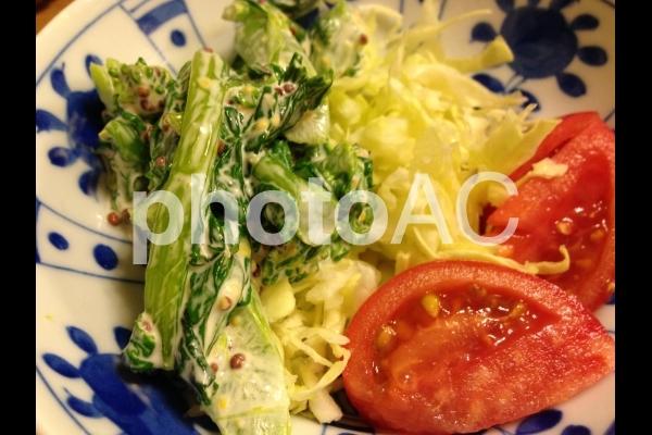 春のサラダの写真