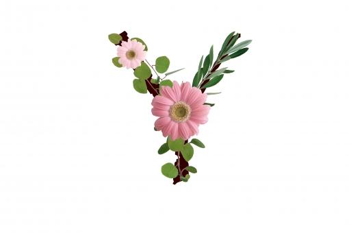 アルファベット ローマ字 英文字 文字 植物 花 ガーベラ テクスチャ 素材