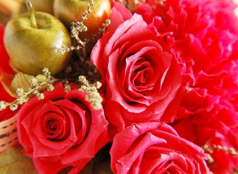 母の日 花束 花かご カーネーション バラ 赤いカーネーション 赤いバラ ギフト プレゼント 感謝 ありがとう 贈り物 春 フラワー フラワーアレジメント ドライフラワー イベント mother carnation 逆光 ギフトカード 赤 レッド 赤い花 お母さん 大好き 記念日 5月 行事 お祝い 販促 ネットギフト 誕生日 ママ 花素材 ローズ プリザーブドフラワー