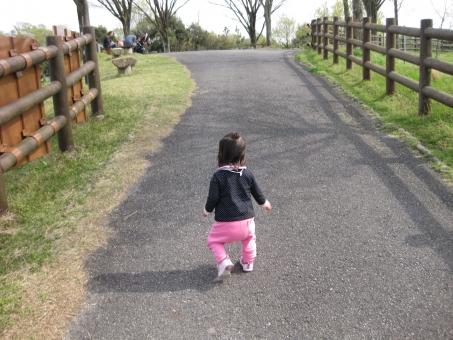 女の子 女 女子 女児 坂道 道 上り坂 登る よちよち歩き 歩く よちよち 公園 牧場 park 柵 子ども 子供 赤ちゃん あかちゃん 1歳 1才 背中 後姿 後ろ 木 緑 芝 ベンチ 一人歩き ひとり歩き