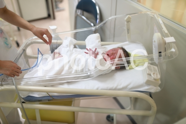 保育器の中の新生児の写真