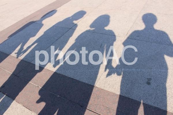 仲良しの散歩の写真
